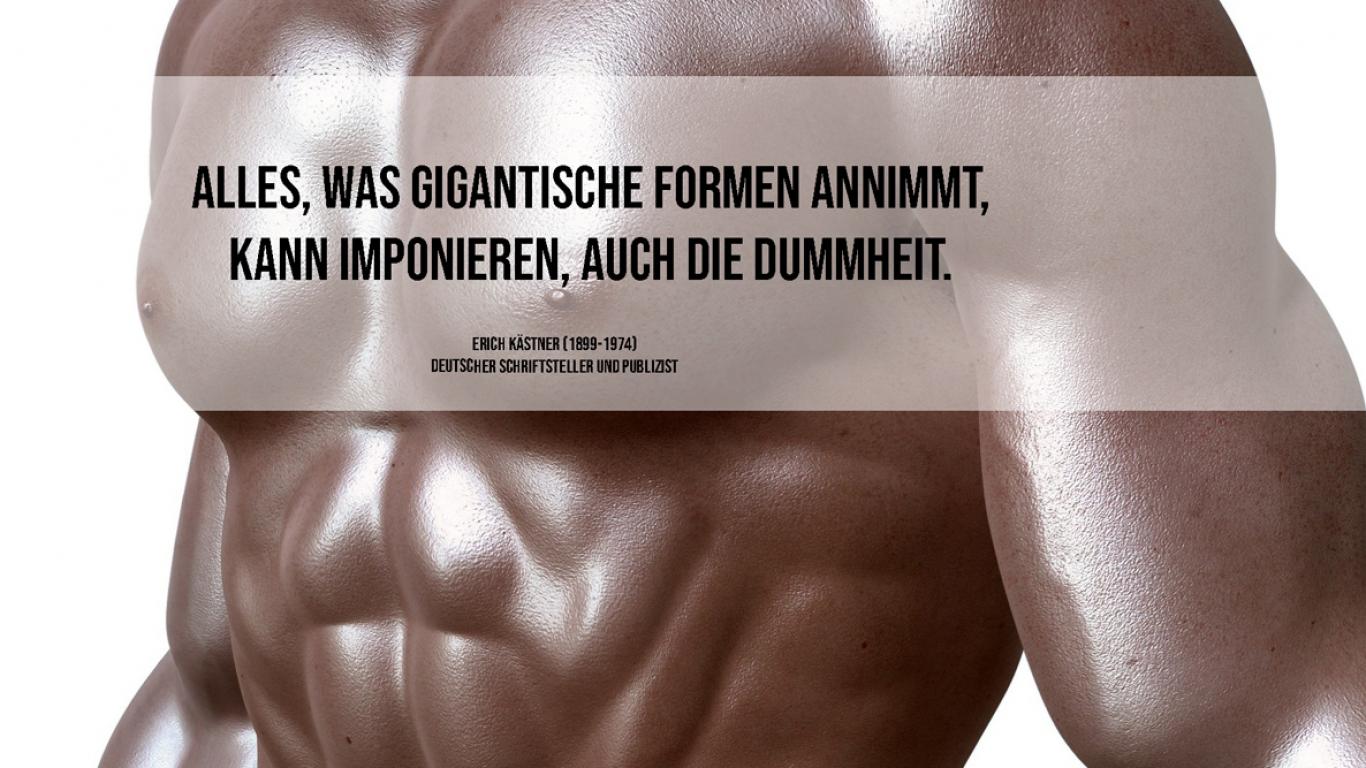 motivation, coaching, coach, life, leben, liebe, dummheit